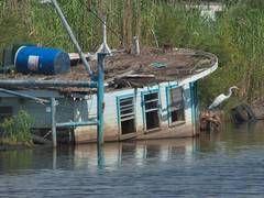 Terrebonne Parish Louisiana - search in pictures