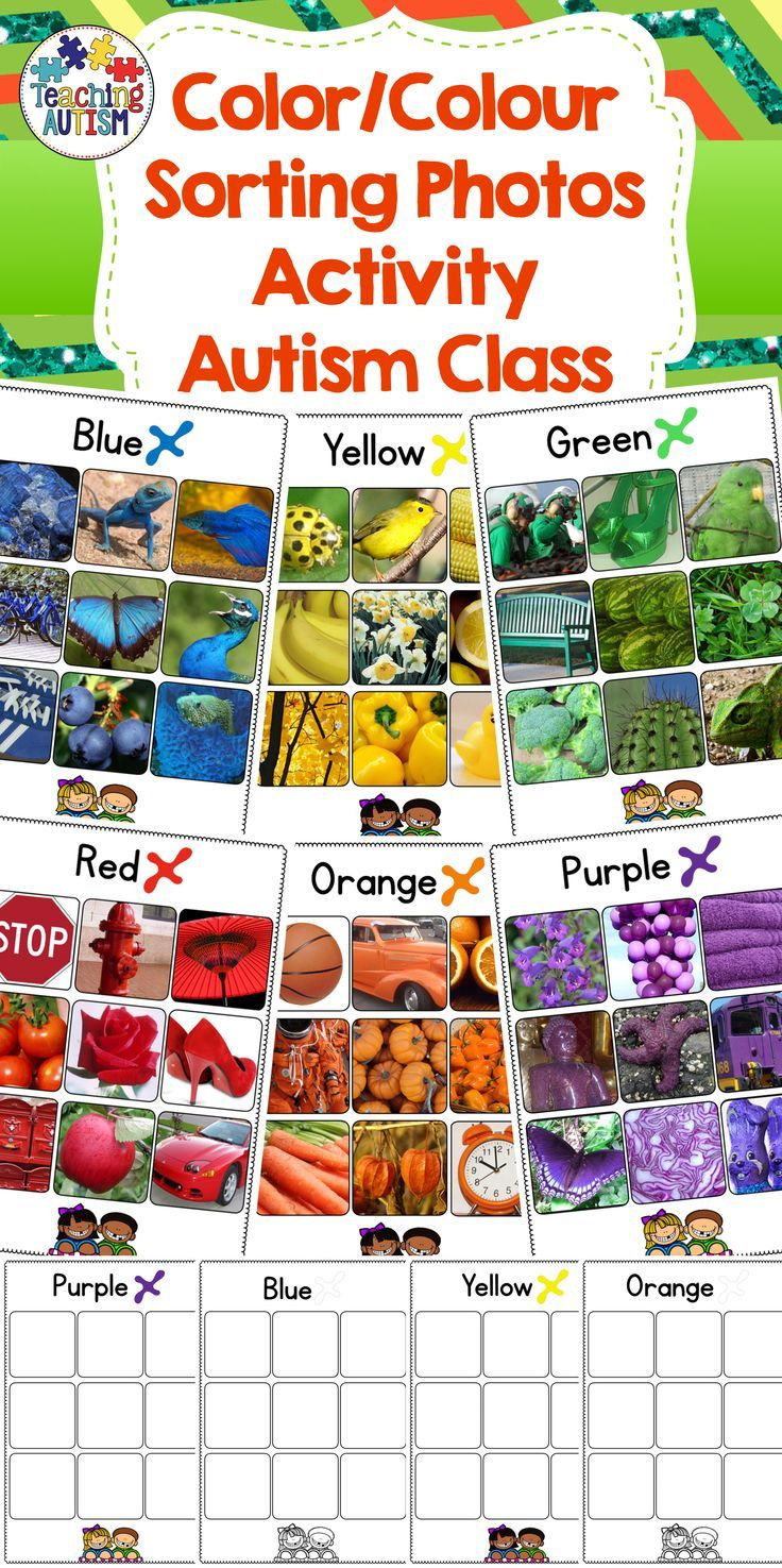 Autism Color / Colour Sorting Activity
