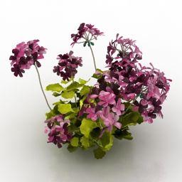 Download 3D Flowers