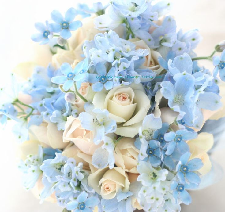 Flowers light blue and little white roses Florals