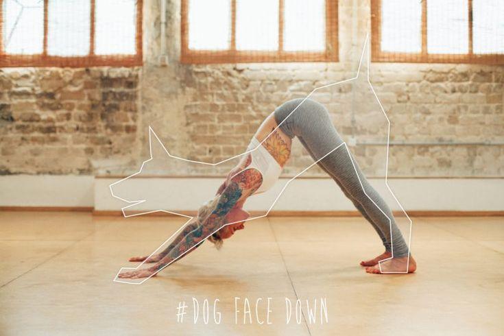 yoga-animal-postura-do-cachorro
