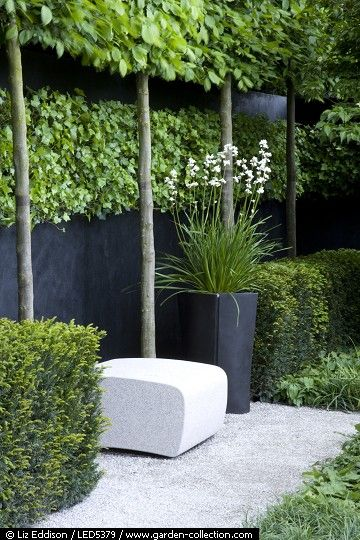 BLACK  CARPINUS BETULUS  CONTAINERS  CONTEMPORARY  FOLIAGE  FURNITURE  GRANITE  GREEN  HEDERA  HEDGING  HORNBEAM  IVY  LIFESTYLE  LIVING  MODERN  PATHS  PLANTING  PLEACHED  SEAT  SUMMERHOUSE  TAXUS BACCATA  TERRACE  WALL  WHITE  YEW  GARDEN