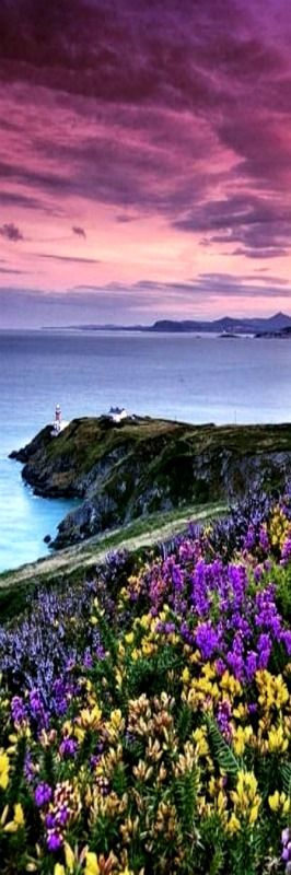A view that never tires: Howth, County Dublin.