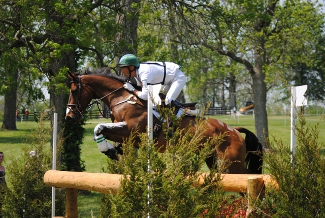 """Twizzel"" USET Eventing, Will ColemanUset Events, Olympics Equestrian"