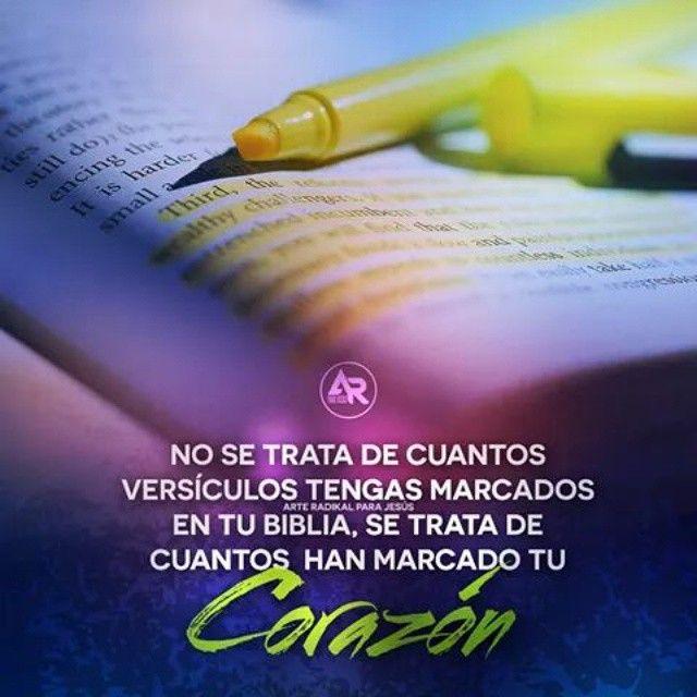 Salmo 139:23-34 Examíname, oh Dios, y conoce mi corazón; Pruébame y conoce mis pensamientos; Y ve si hay en mí camino de perversidad, y guíame en el camino eterno.♔