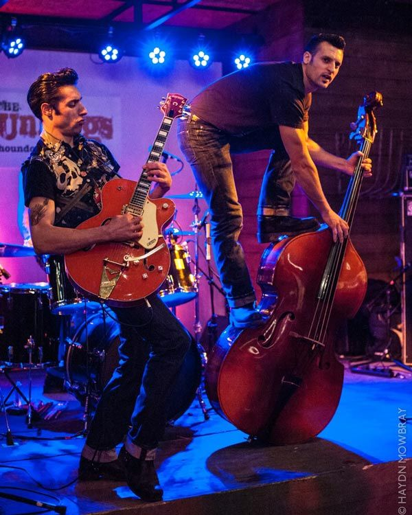 The Houndogs - Rockabilly Band