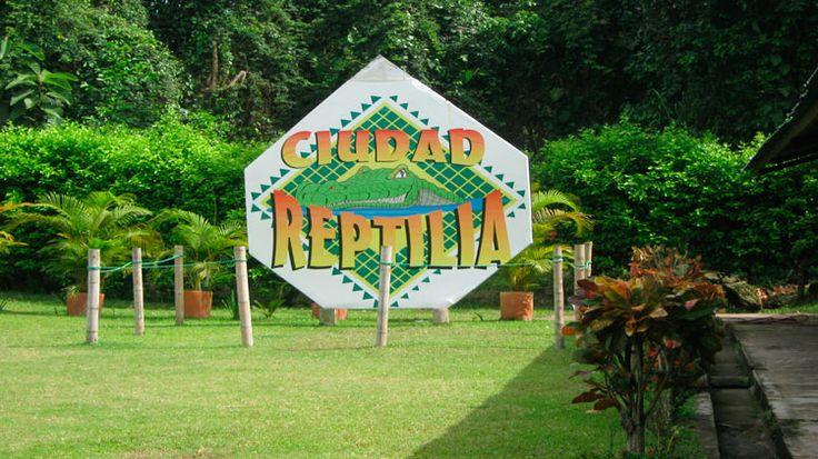 Just posted! Ciudad Reptilia y Alquiler De Fincas En Melgar. https://www.fincasdeturismo.com/ciudad-reptilia-y-alquiler-de-fincas-en-melgar/?utm_campaign=crowdfire&utm_content=crowdfire&utm_medium=social&utm_source=pinterest   #AlquilerDeFincasEnMelgar  #CasasCampestres #AlquilerDeFincaenCundinamarca #AlquilerDeFincasEnGirardot #AlquilerDeFincasEnCalima #FincasDeTurismo #PaquetesTuristicos    i; mso��&�