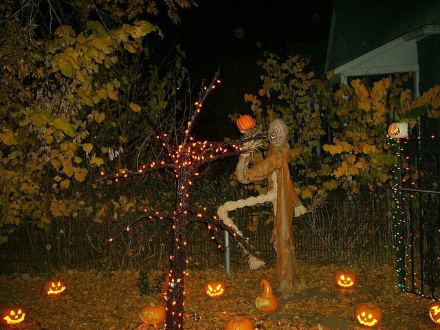 Halloween graveyard: Halloween Halloweendecorations, Halloweendecorations Costumes, Halloween Decorations, Costumes Halloweencostumes, Halloween Fall Decor, Photo