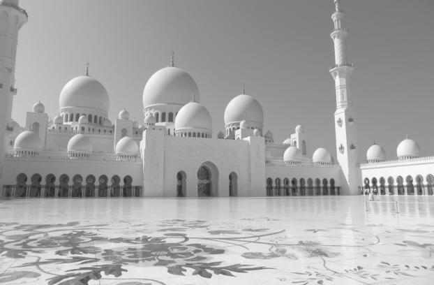City Tour of Abu Dhabi: Sheik Zayed Mosque, Emirates Palace, Marina Mall - TripAdvisor