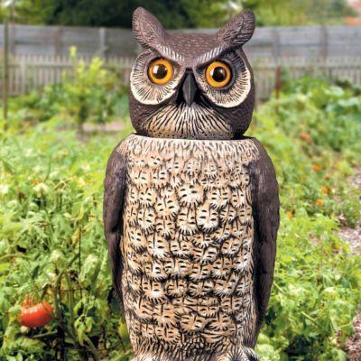 Wonderful Bobbing Head Owl Decoy