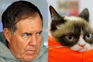 Bill Belichick May Be The Human Version Of Grumpy Cat