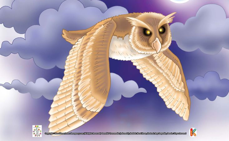 Burung Hantu Berjambul Burung Berusia Terlama