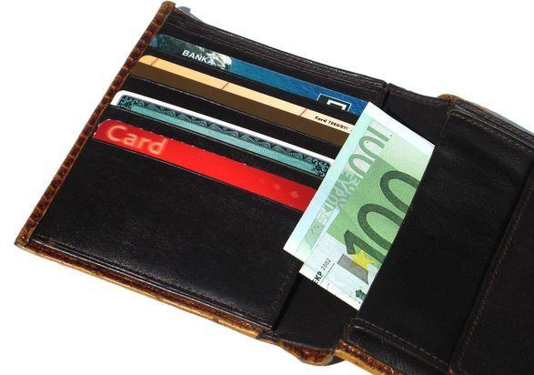 Moja peňaženka sa pýta: Bude Európa menovo jednofarebná? (Svet financií očami komentátora)