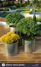 Image result for contemporary garden containers