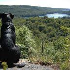 Haliburton Forest::Ontario's Outdoor Adventure Paradise