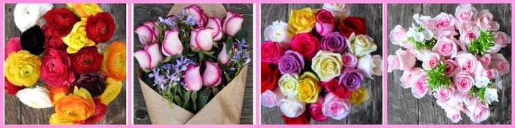The Bouqs:  Mother's Day Special!  2 Dozen Roses = $50 + FREE Shipping!  + $5 Rebate w/ Early Order!