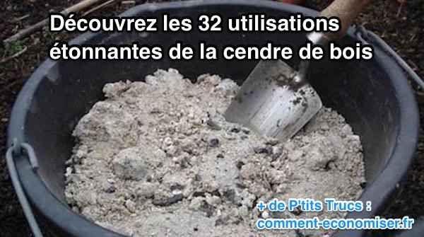 32 Utilisations Surprenantes de La Cendre de Bois : Ne Ratez Pas la n°28 !