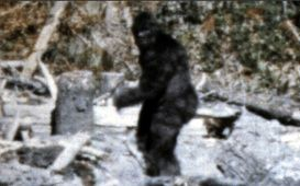 Another 10 Unsolved Mysteries Bigfoot