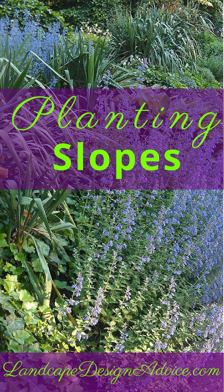 69 best slopes and hillsides images on pinterest for Garden design hillside