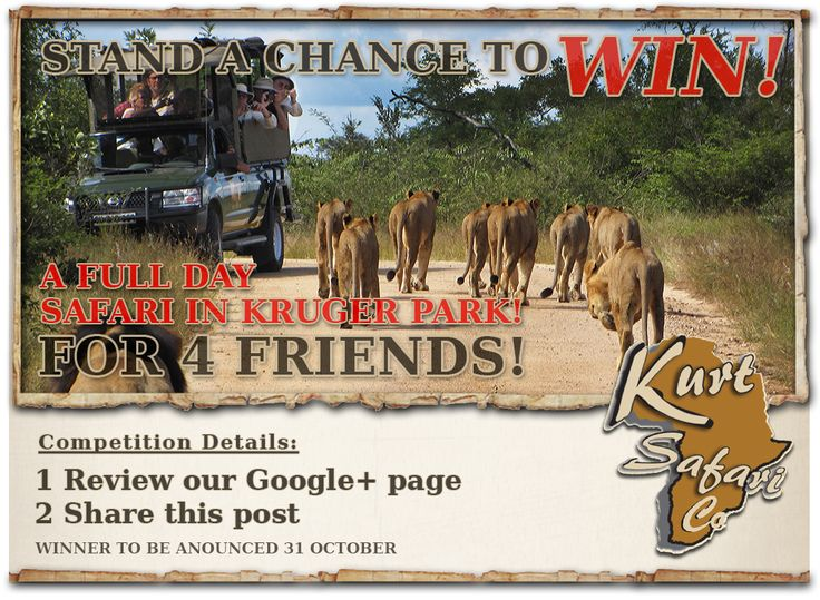 1. Simply click on this link -https://plus.google.com/u/0/b/110842272073300853888/+Kurtsafari/posts        2. Leave aReview on our official Google plus page by clicking onthepen ( shown in red ) why you must WIN this trip for 4 friends....