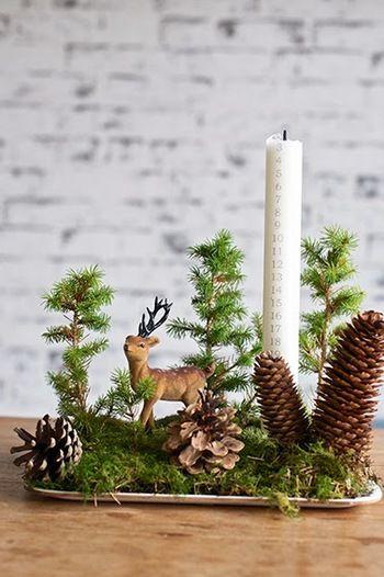 枝や松ぼっくりを木に見立てたり、ミニチュアの動物を置いたり。トレーに小さな森をつくりましょう。クリスマスの神秘的な雰囲気にもマッチする、素敵な世界ができあがります。