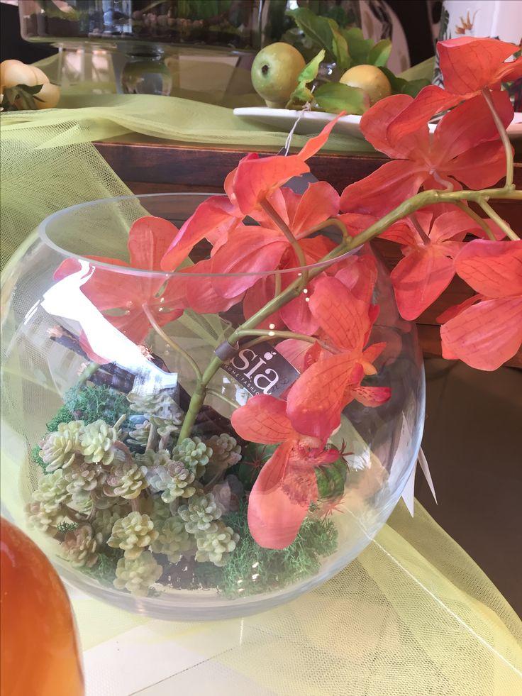 Composizione di piante grasse e orchidee in vado sferico di cristallo  Www.elisa-regali.it