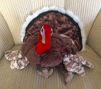 Adventures In Storytime: Oh, My Gosh! It's Thanksgiving!