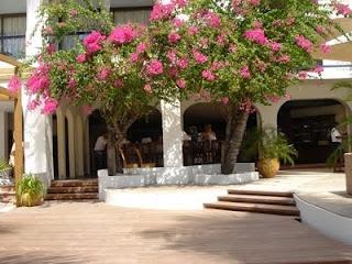 The open air beachside bar at the Holland House Hotel in St Maarten.
