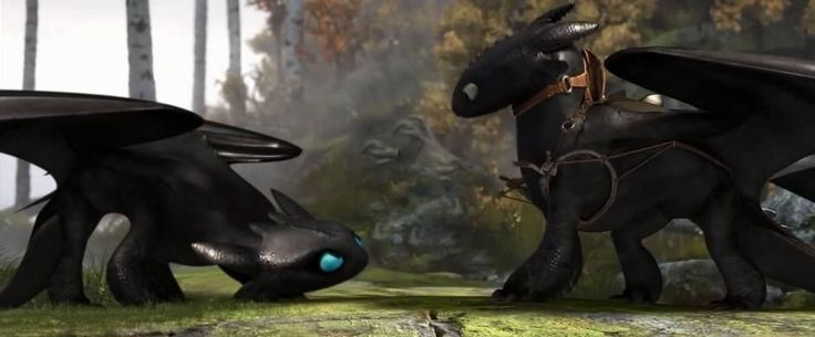 toothless meeting another night fury would be hilarious to watch