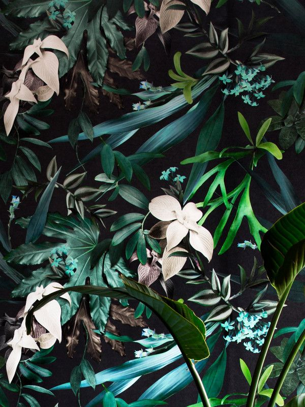 Louise Jones for Rebel Walls — The Design Files | Australia's most popular design blog.