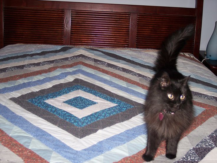 """Another scrap quilt I designed in the """"diamond ring"""" pattern, made queen size.  There are over 400 pieces arranged precisely."""