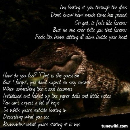 Lyric Art of Through Glass by Stone Sour