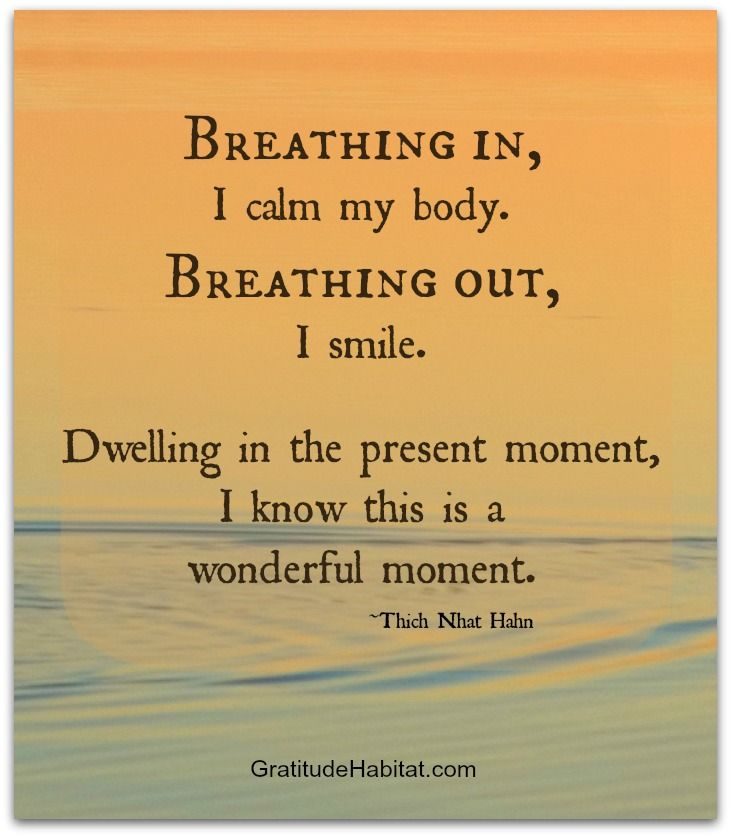 Breathing in, I calm my body. Breathing out, I smile. Dwelling in the present moment, I know this is a wonderful moment. ~ Thich Nhat Hahn                                                                                                                                                     More