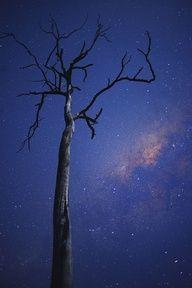 Milky Way / Brisbane, Australia