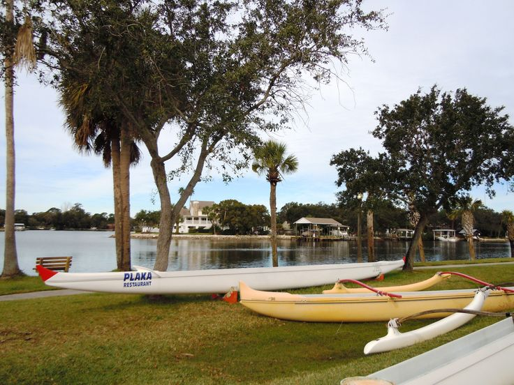 william rutledge tarpon springs florida - 736×552