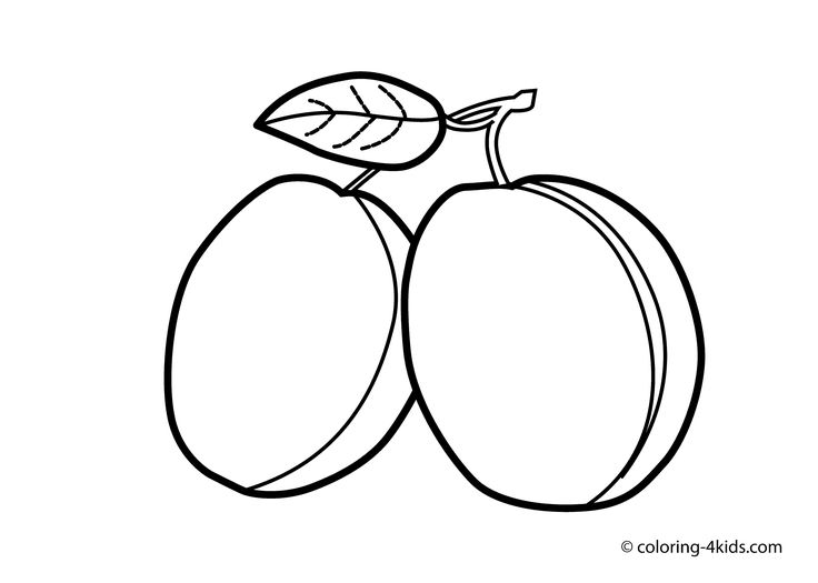 Line Drawing Fruit : Best fruit coloring pages ideas on pinterest food