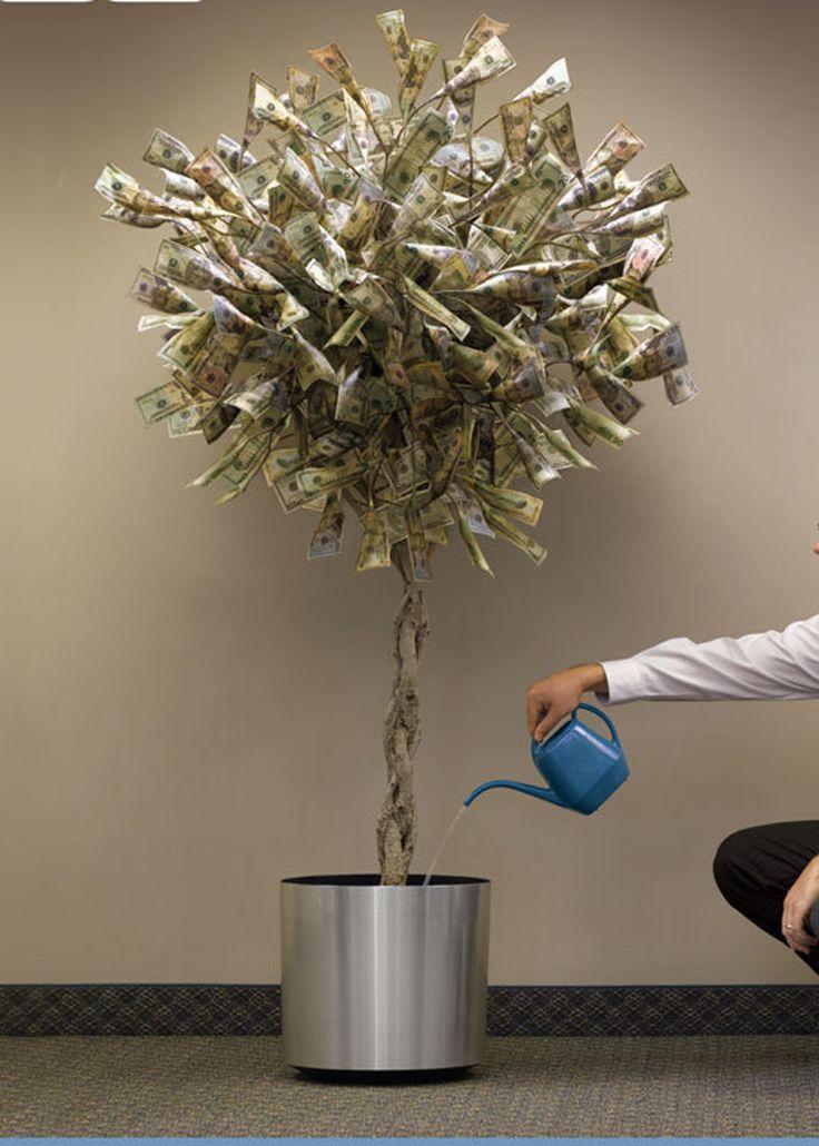 Alpha Male Money Tree
