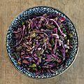 Salade de chou rouge aux herbes et aux graines de courge grillées