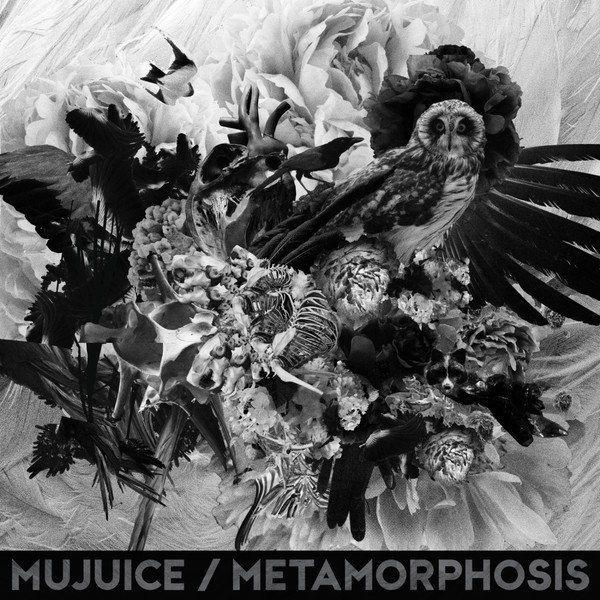 Mujuice - Metamorphosis
