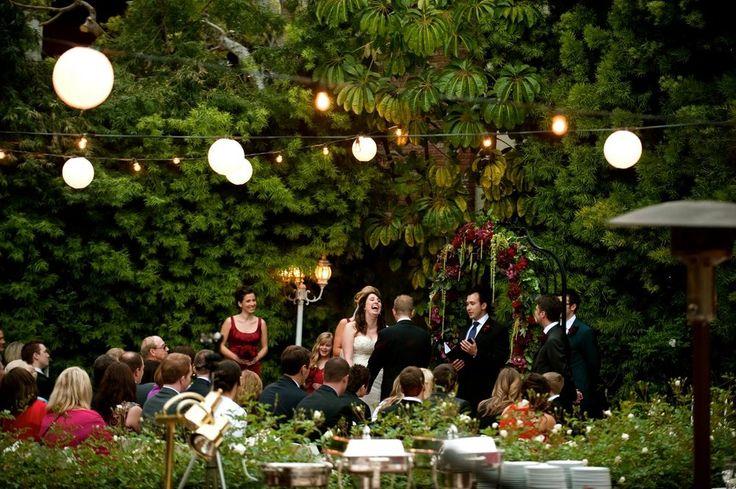 14 Best Dottie Images On Pinterest Succulents Nature And Succulent Plants
