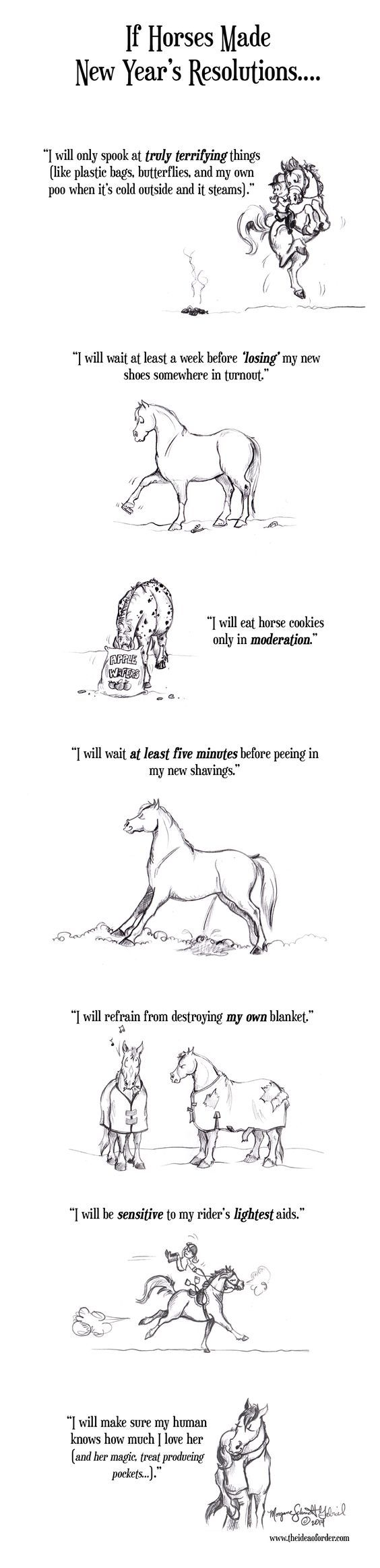 If Horses Made New Years Resolutions HorseNation too bad