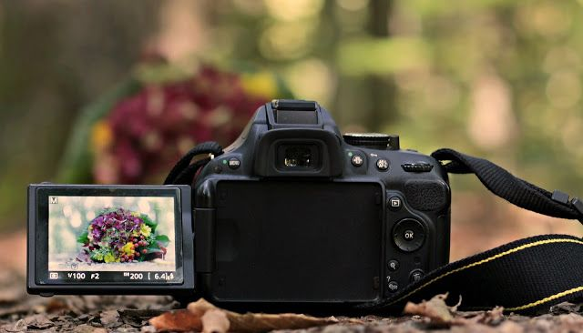 Pin by Animesh Mali on Nikon D5600 Specification And Price
