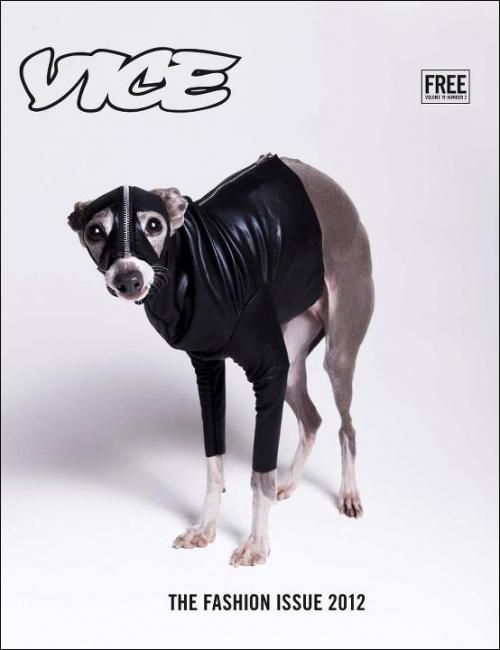 Vice, The Fashion Issue 2012...: Issues 2012, Fashion Issues, Vice Magazines, Definitions Guide, Vice Online, Vice España, Bryans Derballa, Magazines Reference, Magazines Covers