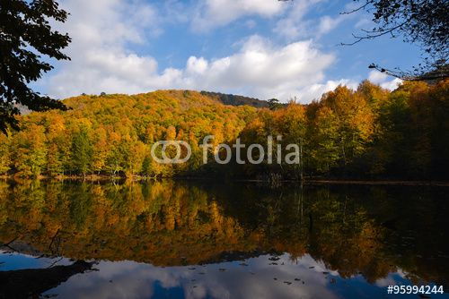 """Fall Time at The Big Lake At The Yedigoller National Park, Turkey. Fall is famous at this place. Reflections and clouds were beautiful. tarafından oluşturulmuş """"milotus"""" Telifsiz fotoğrafını en uygun fiyatta Fotolia.com 'dan indirin. Pazarlama projelerinize mükemmel stok fotoğrafı bulmak için, en ucuz online görsel bankasına göz atın!"""