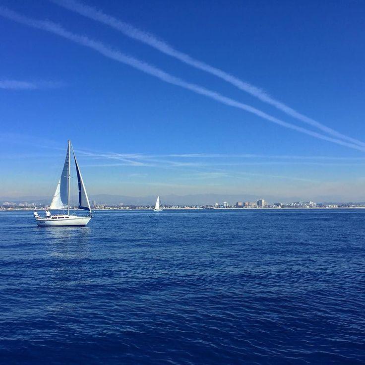 The life :) #sailing #marinadelray #california