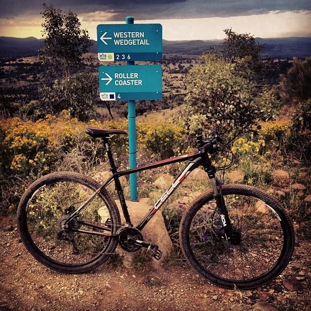 Tough choice! Great day of shredding the new #CellStromlo 2.0 at #Stromlo #mtb #sramX5