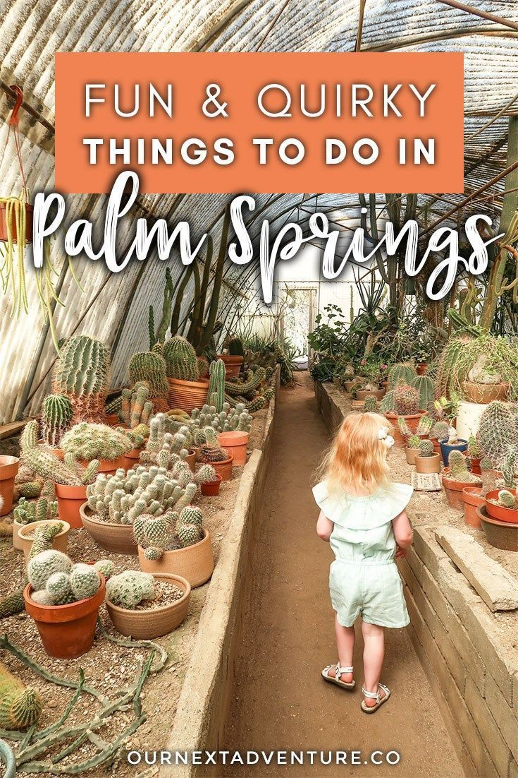 7 Fun Quirky Things To Do In Palm Springs In 2020 Palm Springs Family Vacation California Family Travel Destinations