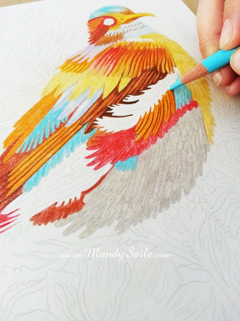 Mandy Saile - Creating Joyfully Whimsical Coloured Pencil Art Whiles Living With Happy House Rabbits: A Mix Made In Heaven