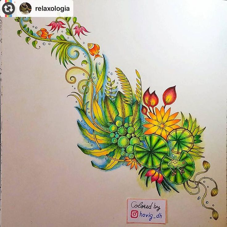 #Reposting @relaxologia with @instarepost_app -- #relaxologia #adultcoloringbook #magicaljungle #johannabasford #prismacolor #prismacolorpencils #crayola #coloringbook #coloring #stressrelief #relaxing #colours #colors #lostocean #enchantedforest #johannaschristmas #mycreativeescape  #selvamagica #staedtler #fabercastell #coloredpencils #pencil #art #artist #draw #drawing #wip