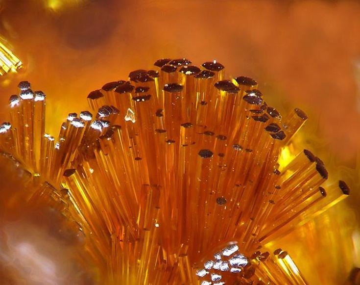 Cacoxenite. El Horcajo Mines, Ciudad Real, Castilla-La Mancha, Espagne Taille=1 mm Photo Christian Rewitzer